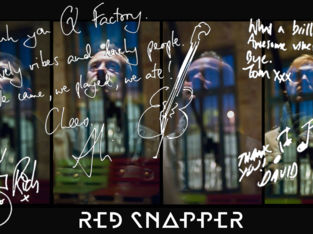 Red Snapper Quote